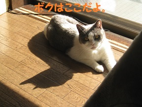 IMG_2610.jpg