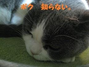 IMG_7714.jpg